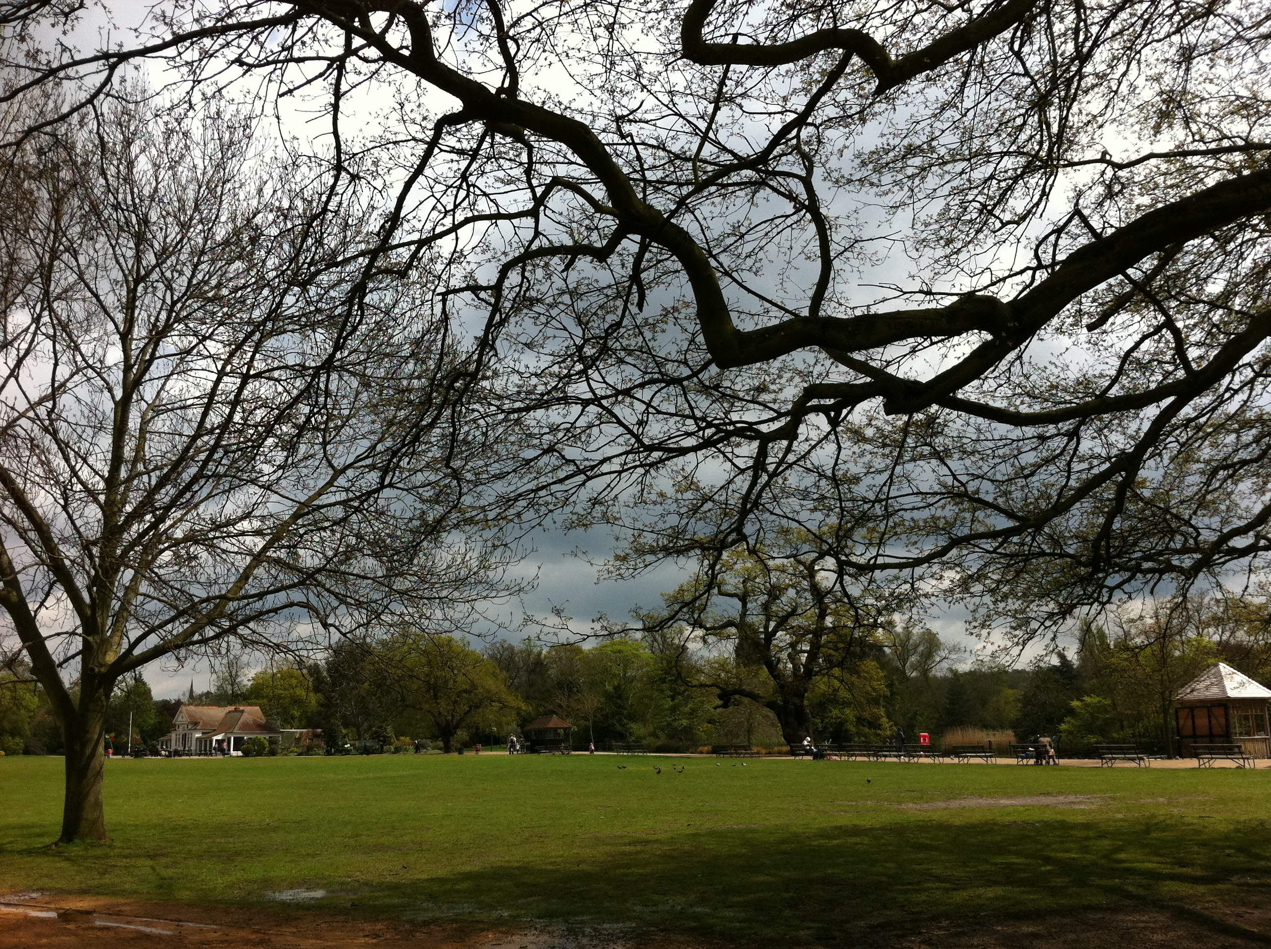 Is Dulwich Park Cafe Open
